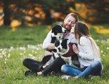 Perros y relaciones de pareja: cómo influyen y qué aportan